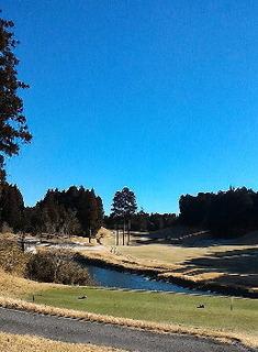 山田ゴルフ.jpg