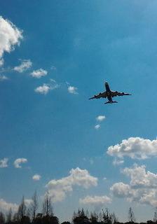 飛行機.jpg